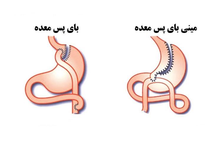 تنظیم هورمونهای مترشحه بدن می باشد