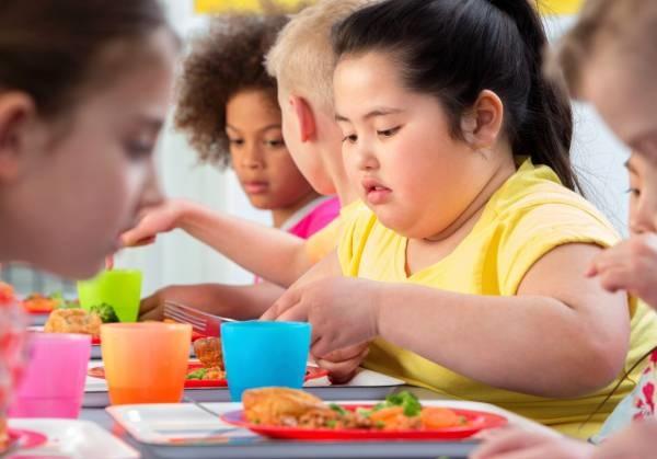 به طور کلی دلیل چاقی در کودکان دو چیز می باشد:
