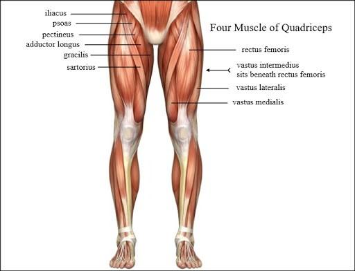 عمل چاقی ران در بخش خارجی و بیرونی ران ها