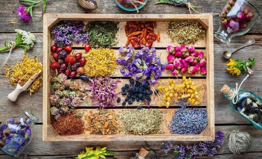رژیم غذایی برای کاهش میزان کراتینین خون