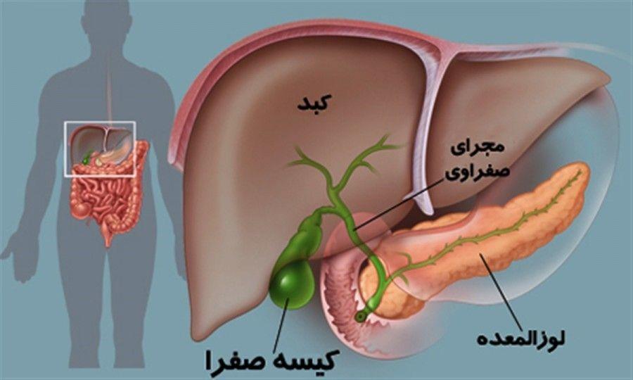 بهترین جراح پانکراس ایران
