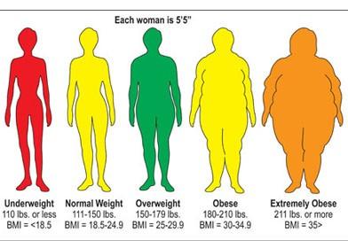 الگوی افزایش مناسب bmi در دوران بارداری