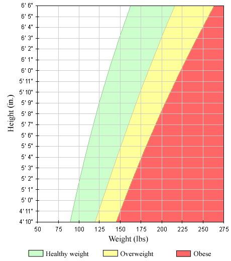 تاریخچه ی ایجاد معیار BMI یا شاخص توده بدنی